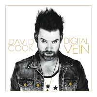 David Cook's Digital Vein Album Strikes The Perfect Chord.
