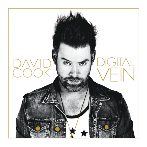 David Cook, Digital Vein