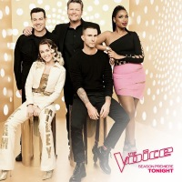 Vocal MasterClass Discussion For The Voice Season 13: The Blind Auditions Week One