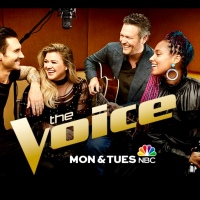 Vocal MasterClass Discussion For The Voice Season 14: The Battles Begin